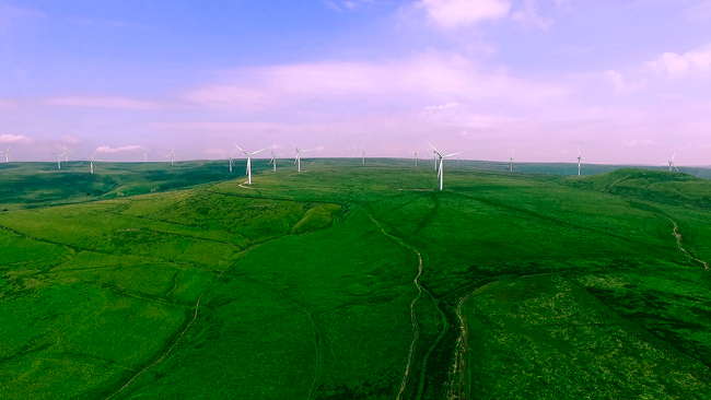 Aerial view of wind turbine field
